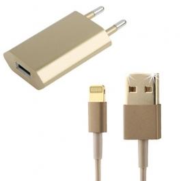 Câble Lightning et adaptateur secteur Or / Gold
