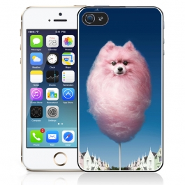 Coque iPhone 5 et 5S Barbachien
